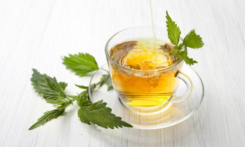 Koprivin čaj za hujšanje